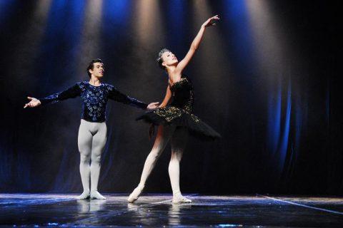 Neste ano mais de 235 coreografias passarão pelo palco do teatro durante os dias de evento