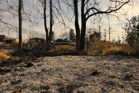 Vegetação queimada as margens da ERS 344 mostra os estragos provocado por um incêndio ocorrido no último dia 24