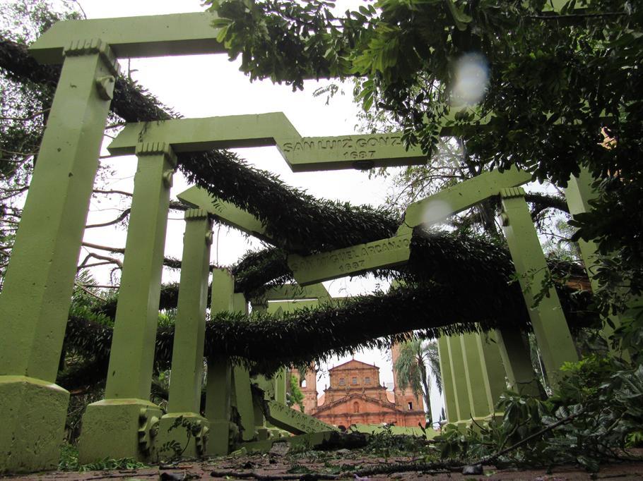 Jacarandá Mimoso com tronco doente cai com o vendaval e destrói pelo menos três pérgolas  que representam os trinta Povos Missioneiros na Praça Pinheiro Machado