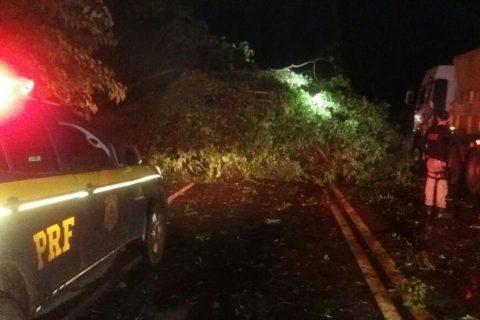 o acidente mais grave ocorreu em Santa Rosa, na quinta-feira, dia 11, na BR 472, quando uma motociclista colidiu em uma árvore que estava sobre a pista em razão do temporal