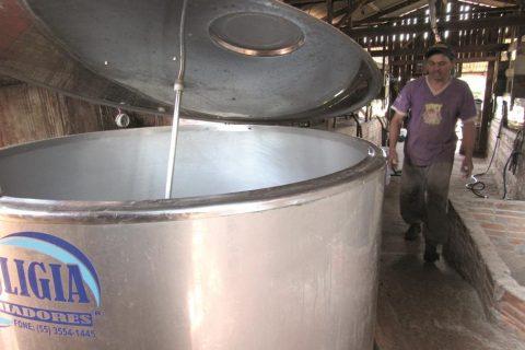 Produção leiteira
