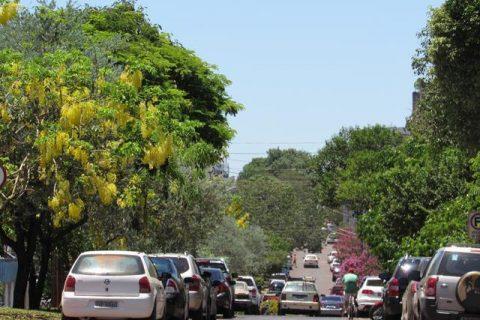 Trânsito - AV Brasil - cidade (9)