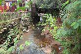 Água doce - Sangas e nascentes urbanas (11) (Copy)