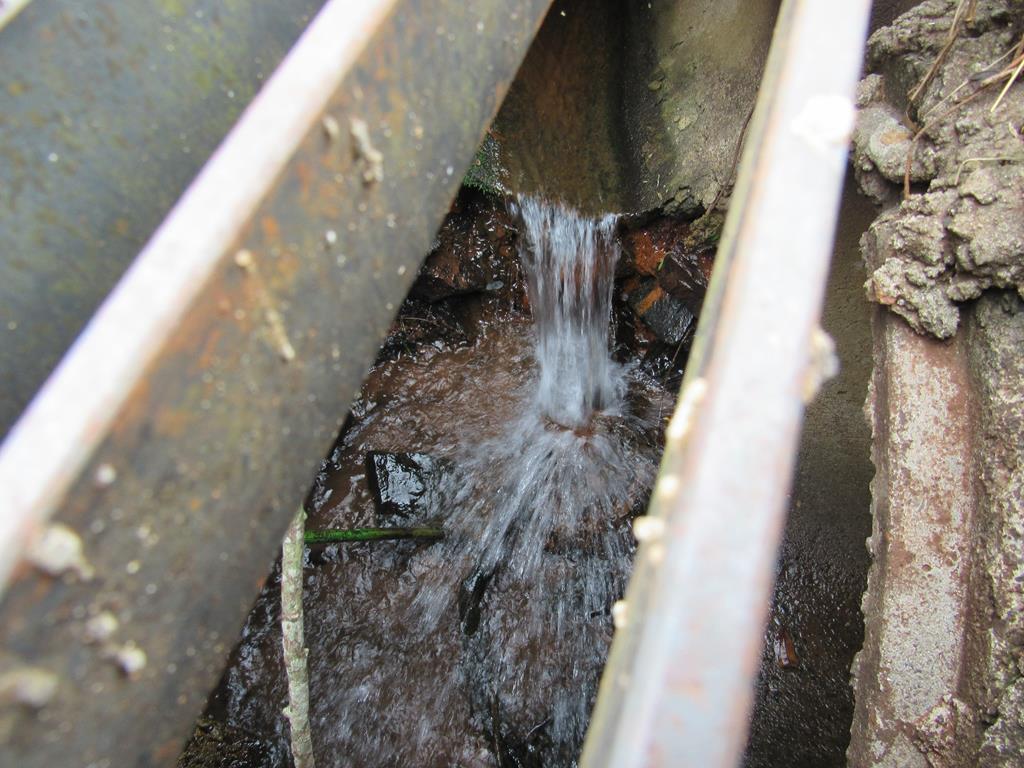Água doce - Sangas e nascentes urbanas (4) (Copy)