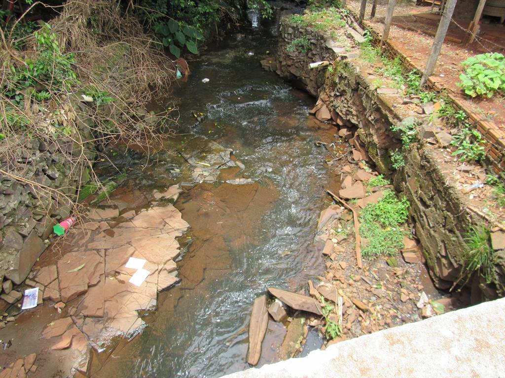 Água doce - Sangas e nascentes urbanas (9) (Copy)