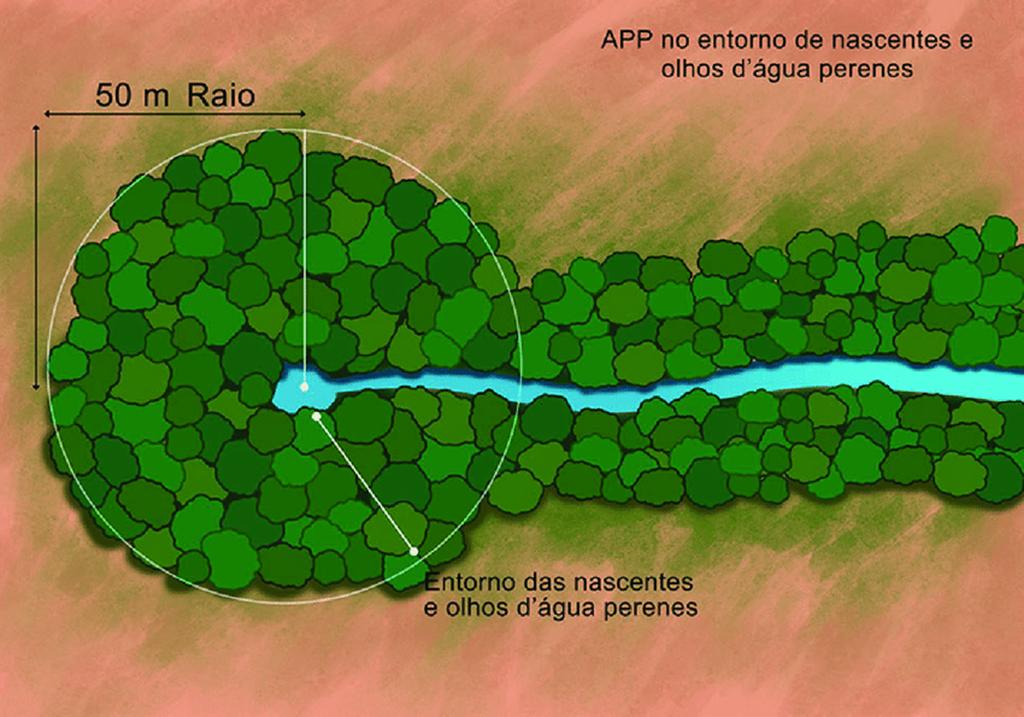 Figura-2-APP-no-entorno-de-nascentes-e-olhos-dagua-perenes-In-Cartilha-do-Codigo (Copy)