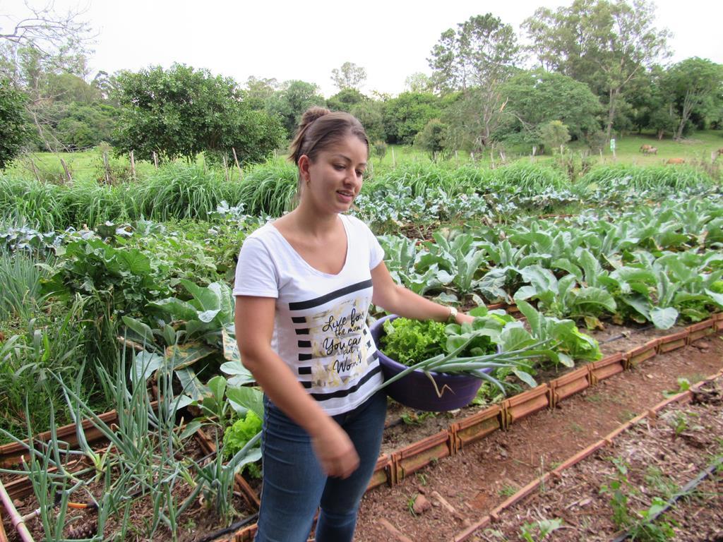 Horta Orgânica da Maíra Alfaro (4) (Copy)