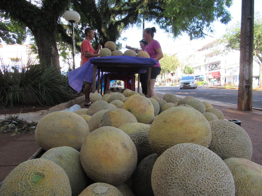 Melões da Ilha Grande (Copy)