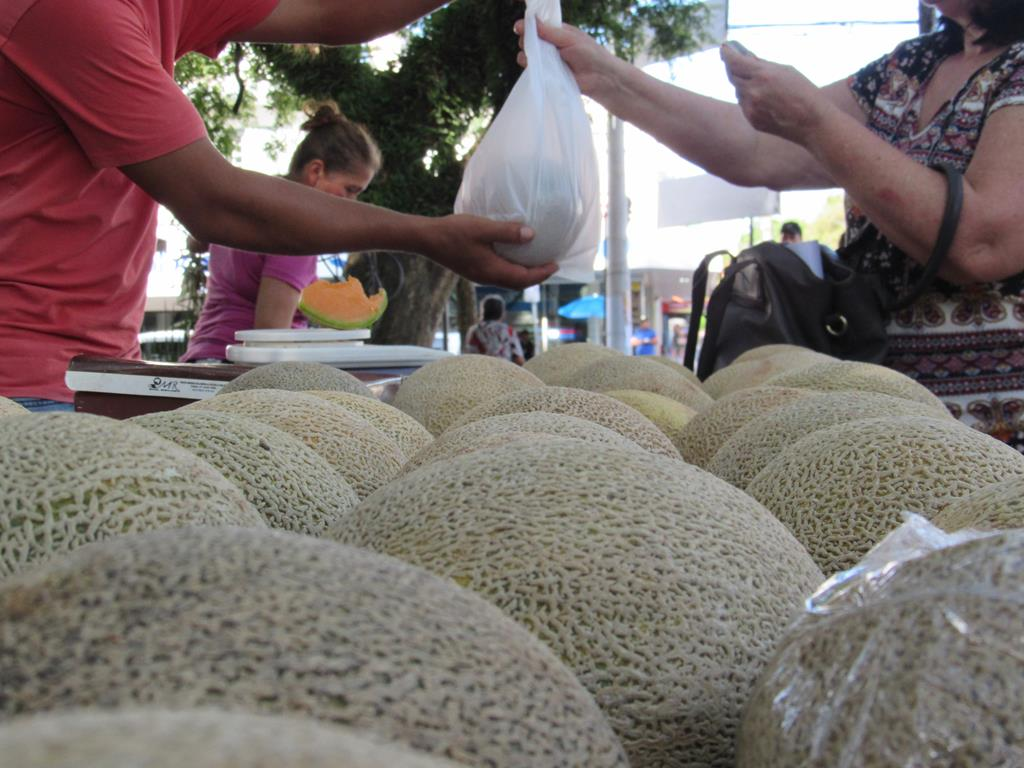 Melões da ilha grande (1) (Copy)