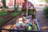 Iaia - Frutas e verduras 04 (Copy)