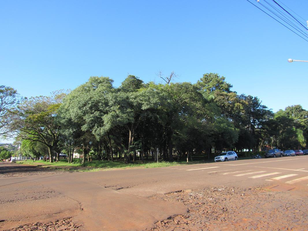 Praça Raul Oliveira (50) (Copy)