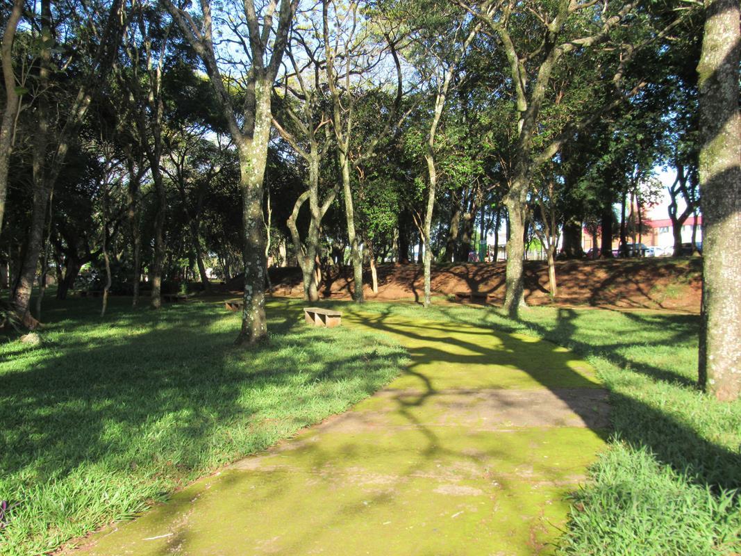 Praça Raul Oliveira (53) (Copy)