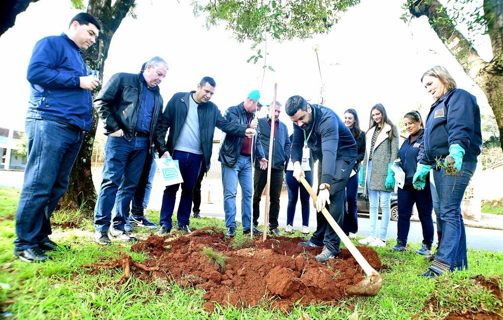 Plantio de árvores na Av. Salgado Filho na sagrada família-foto fernando gomes (Copy)