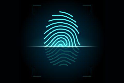 biometria (2)