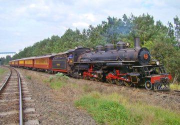 Locomotiva-Maria-Fumaça-Mallet-204-2-360x250.jpg