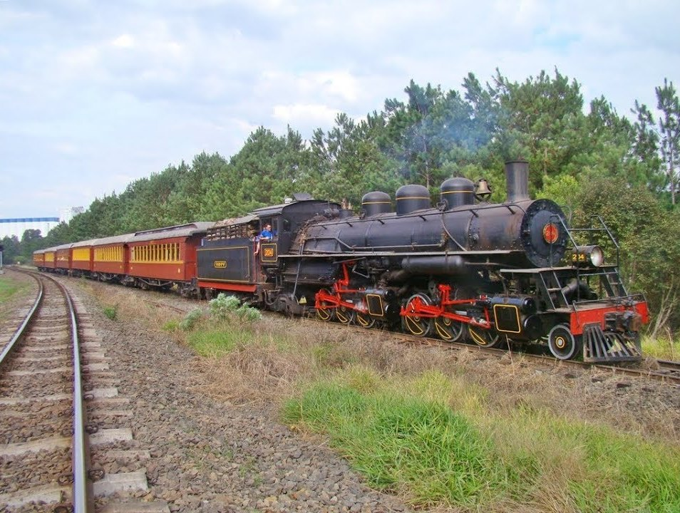 Locomotiva Maria Fumaça Mallet 204 - 2