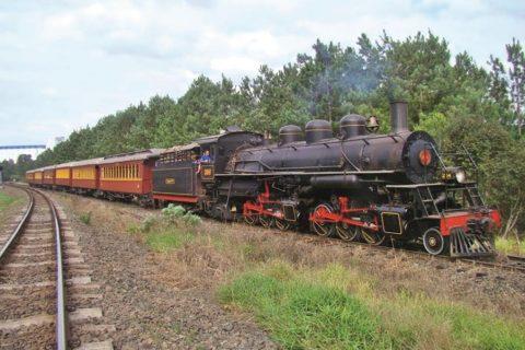 Locomotiva Maria Fumaça Mallet 204 - 2 (Copy)