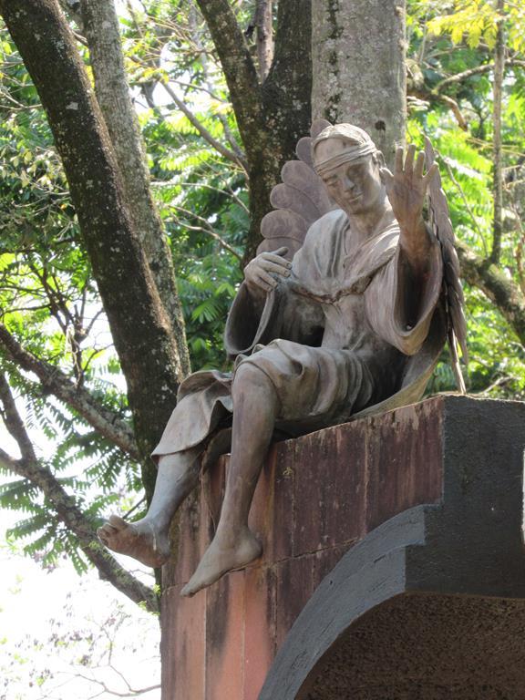 Anjo da Guarda (Copy)