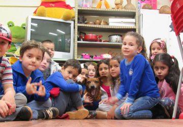 Chicão-Série-Animais-cão-mascote-da-Escola-Francisco-brochado-da-Rocha-2-Copy-360x250.jpg