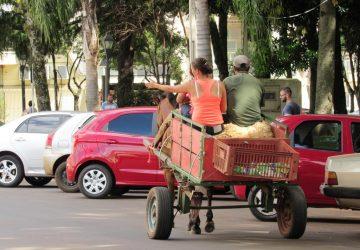 Carroças-no-centro-do-município-Copy-360x250.jpg