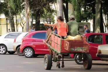Carroças-no-centro-do-município-Copy-370x250.jpg