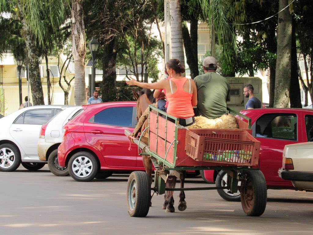 Carroças no centro do município (Copy)