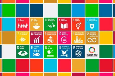 ODS ONU - Agenda 2030 (Copy)