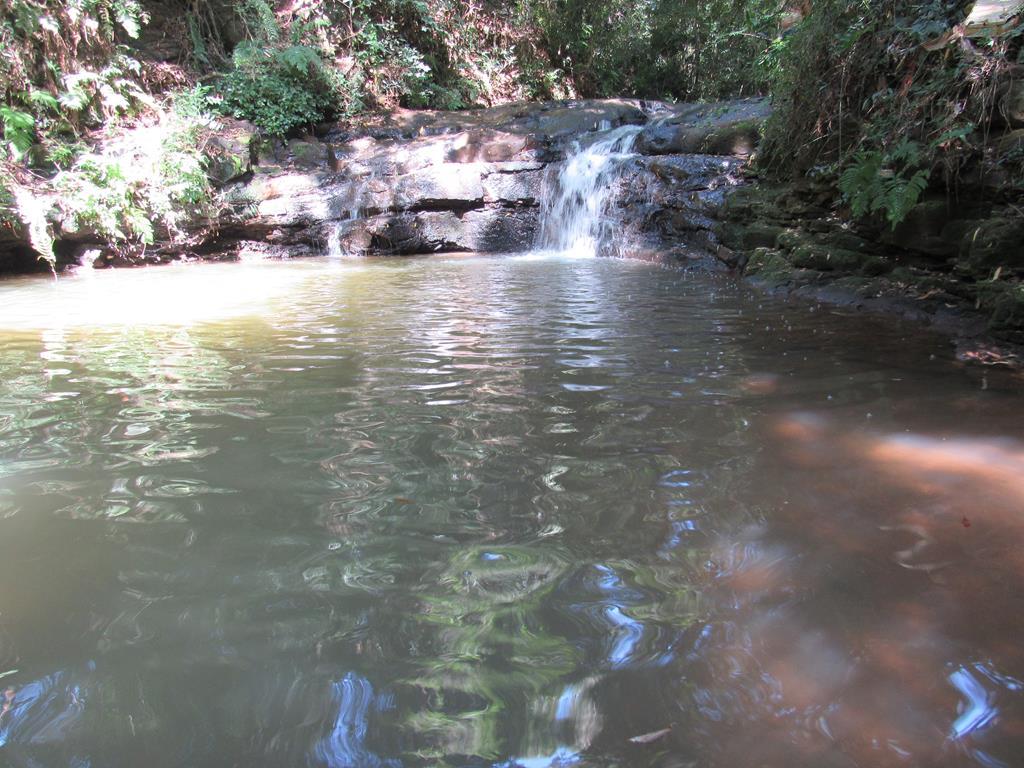 Quedas d'água - cascata no bairro ditz e dido (31) (Copy)