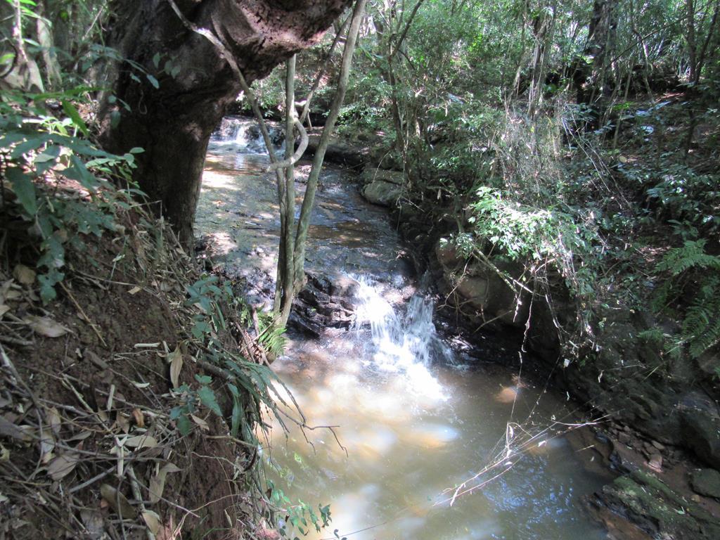Riacho entre o Bairro Ditz e Dido em Santo Ângelo - Foto: Marcos Demeneghi