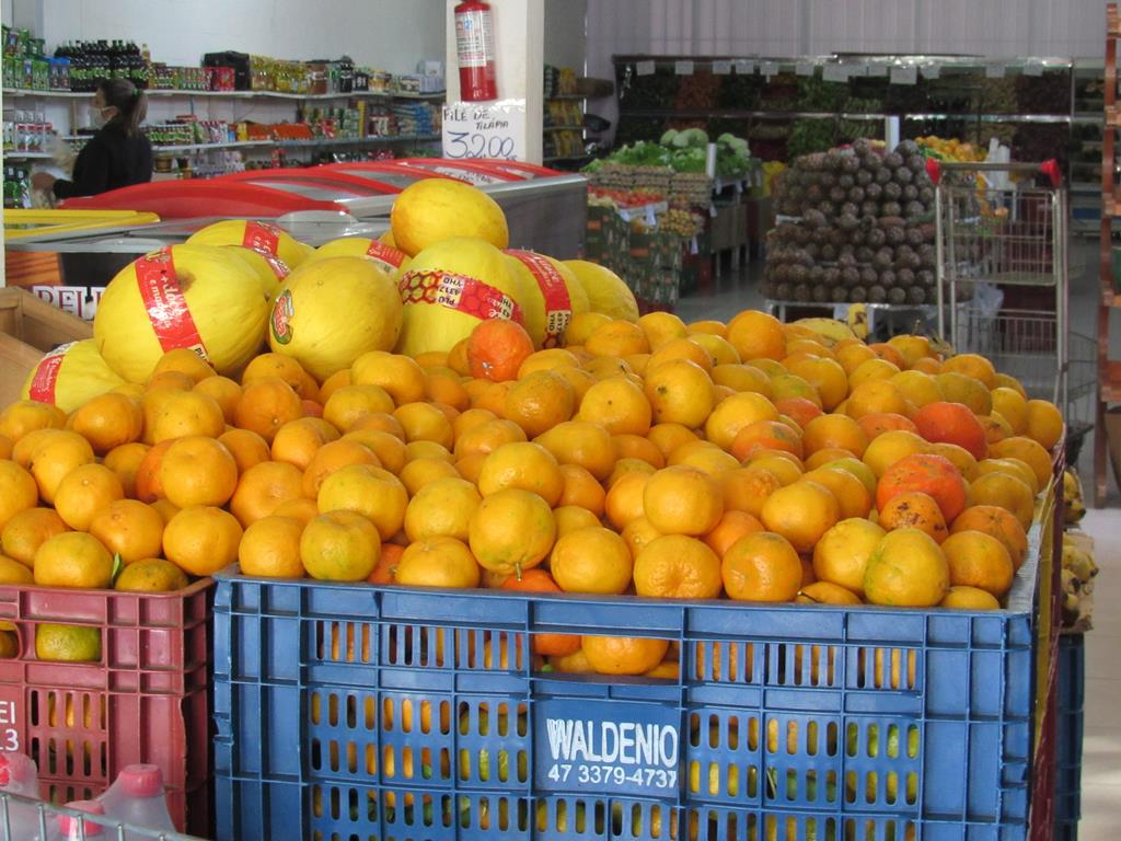 Bergamota na fruteira (2) (Copy)