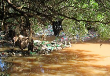 Queda-dágua-Córrego-da-Coca-Bairro-Pascotini-e-Neri-Cavalheiro-27-Copy-360x250.jpg