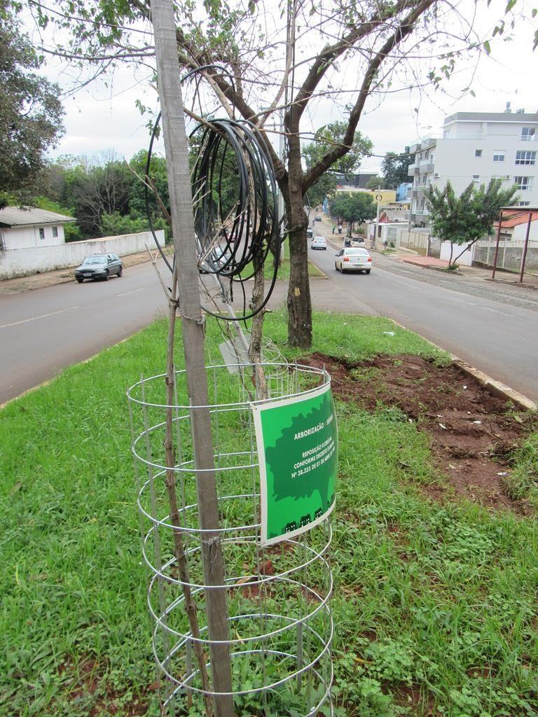 Arborização Urbana (2) (Copy)