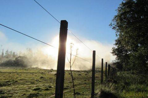 Foto - Marcos Demeneghi - amanhecer no inverno de 2020 no interior de Santo Ângelo - Temperatura de seis décimos