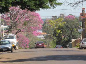 Rua Marques de Tamandaré