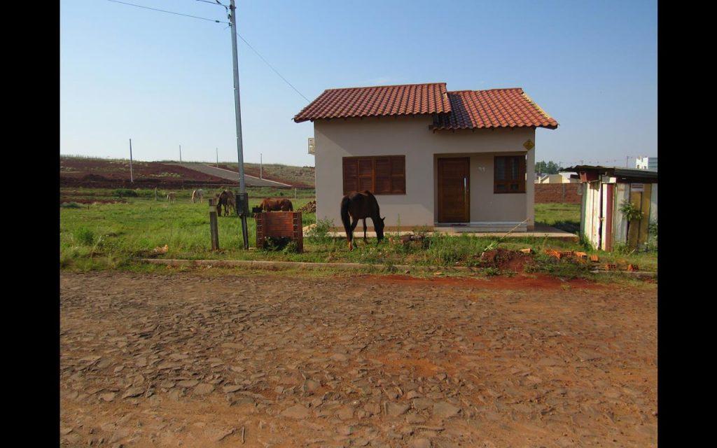Cavalos na zona norte (10) (Copy)