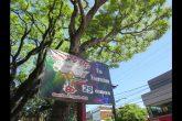 Outdoor na Praça Ricardo Leônidas Ribas informa sobre os 29 anos do Brique da Praça - Foto Marcos Demeneghi