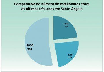 Gráfico-dos-casos-de-estelionato-durante-a-pandemia-Santo-Ângelo-360x250.jpg