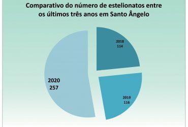 Gráfico-dos-casos-de-estelionato-durante-a-pandemia-Santo-Ângelo-370x250.jpg