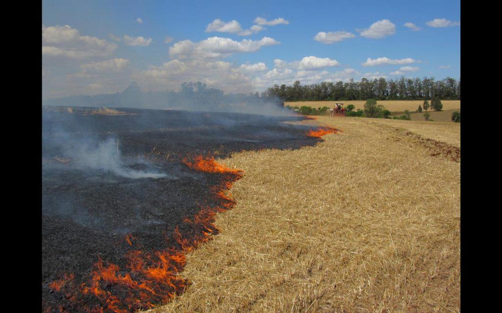 Fogo queima 40 hectares de palha de aveia em uma lavoura localizada em Buriti, zona rural de Santo Ângelo - Foto: Marcos Demeneghi