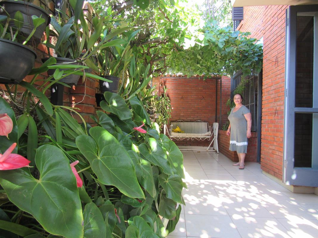 Antúrios, orquídeas e videiras na sua varanda