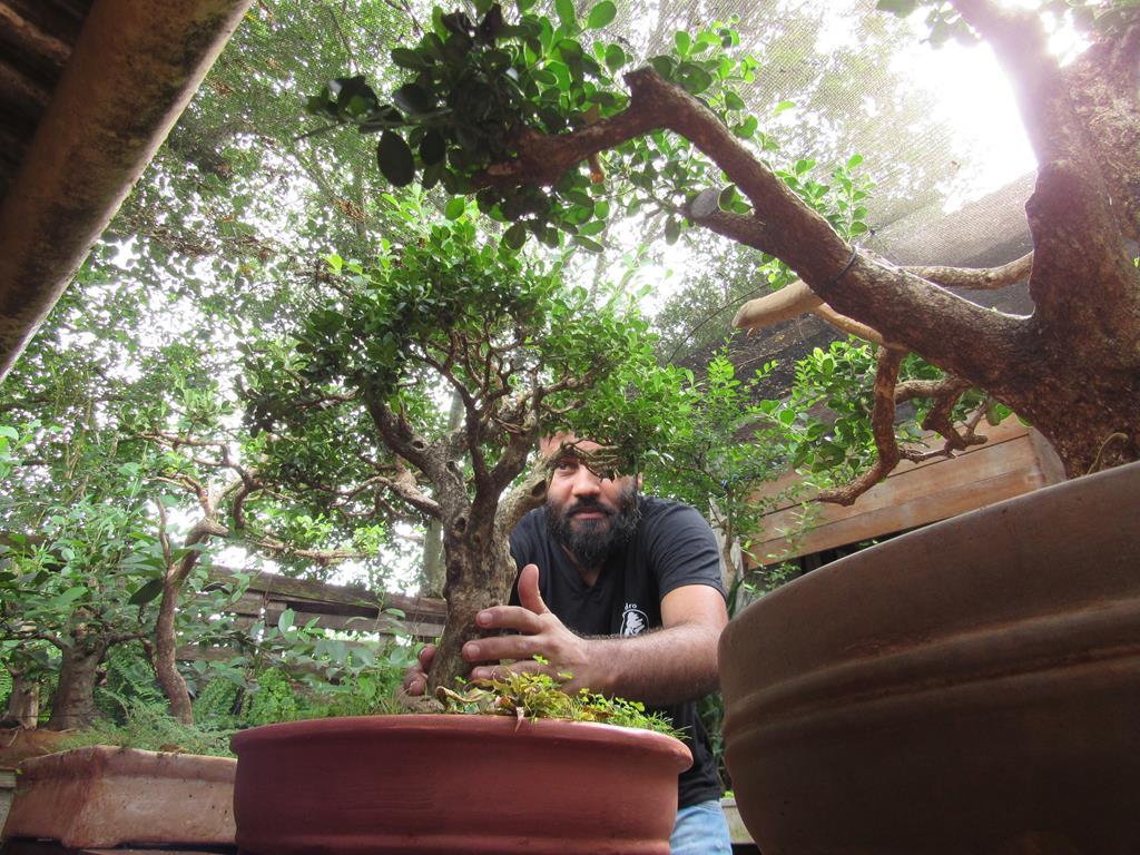 Lucas de Freitas Jardim é um bonsaista com deficiência visual - Foto: Marcos Demeneghi