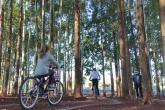 No último final de semana de sol as crianças aproveitavam o espaço para brincar com suas bicicletas. - Foto: Marcos Demeneghi