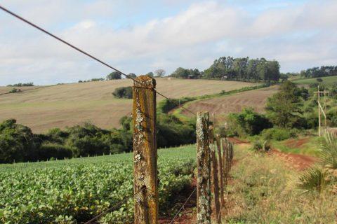 Acostamento da estrada de acesso a São João Batista- Características do relevo e paisagem Foto - Marcos Demeneghi