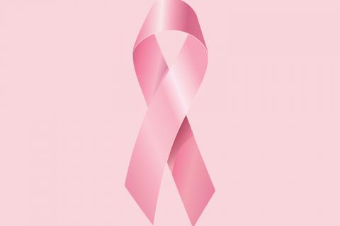 october-pink-1718025_1280 (Copy)